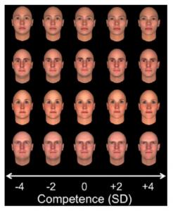 Abb. 2: Computergenerierte Gesichter mit nach rechts steigender Kompetenzwahrnehmung (Olivola/Todorov 2010)