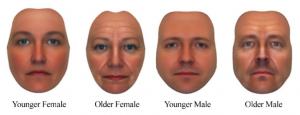 Jüngere und ältere Gesichter von Männer und Frauen (Spisak/Grabo/Arvey/Van Vugt 2014)
