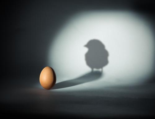 Paradoxien in Organisationen – Einblicke und Folgen für die Führung
